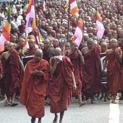 birmanos.jpg